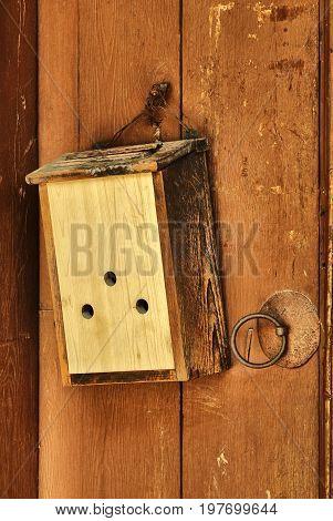 Old wooden door with vintage mailbox hanging
