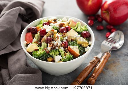Fall salad with apple and cranberry, cheese and crumbled bacon