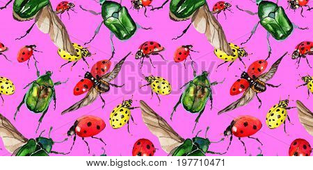 Exotic ladybug wild insect pattern in a watercolor style. Full name of the insect: ladybug. Aquarelle wild insect for background, texture, wrapper pattern or tattoo.