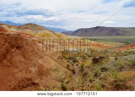 Small canyon with succulents between red hills of Altai mountains. Altay Republic Russia.