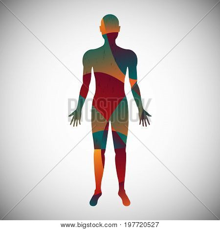 Human body color abstract style for information use medical health science business technology and multi-purpose vector illustration