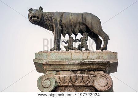 Statue of Romulus and Remus at Forum of Caesar in Rome, Italy. Architecture and landmark.
