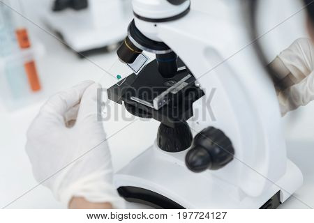 Research material. Close up of a sample slide being out into the microscope by a professional intelligent female biologist