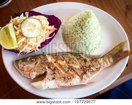 A beautiful lunch of fresh red snapper, cilantro rice and cole slaw is presented at a restaurant in Caye Cauker, Belize.