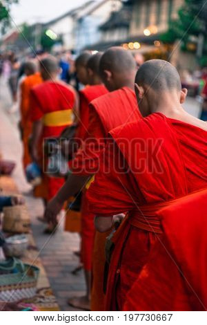 LUANG PRABANG LAOS - MARCH 12 2017: From the back picture of monks receving food and money at Buddhist Alms Giving Ceremony before the sunrise in Luang Prabang Laos.