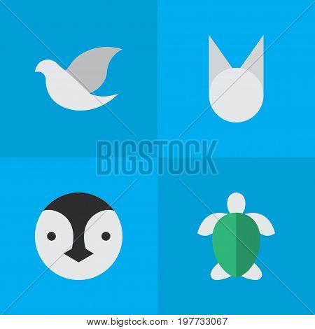 Elements Pigeon, Turtle, Flightless Bird And Other Synonyms Cat, Pigeon And Flightless.  Vector Illustration Set Of Simple Animals Icons.