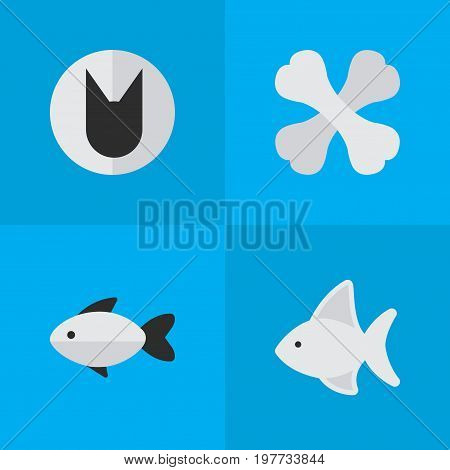 Elements Tomcat, Perch, Skeleton And Other Synonyms Fish, Cat And Skeleton.  Vector Illustration Set Of Simple Fauna Icons.