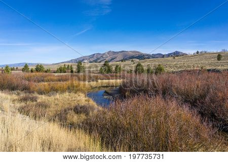 A stream flows through a Sawtooth Mountain Grassland surrounded by red rushes with a clear blue sky overhead.