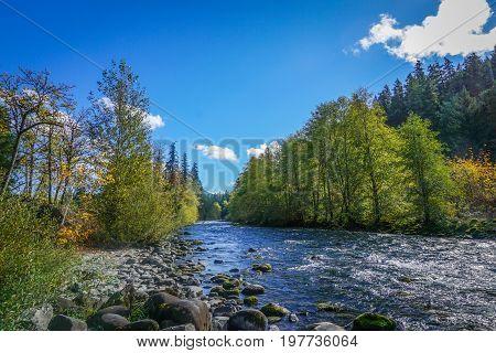 A mountain stream rushes through the Umpqua forest in autumn