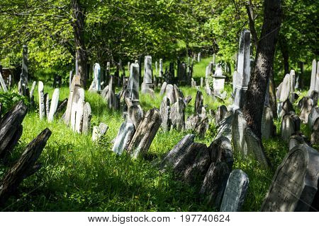 Old Jewish Cemetery stone tombstones town of Mikulov in the Czech Republic