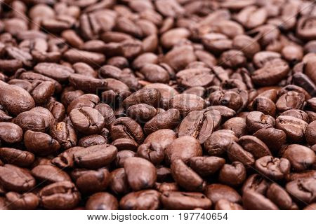 Top view of roaster brown coffee beans coffee background and texture