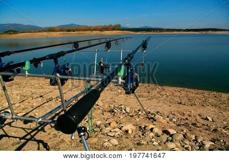 Carp fishing. Rods on a rod pod with the swingers attached ready to catch some fish monster.