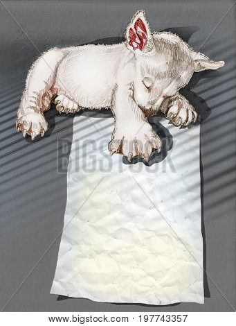 Puppies hand drawn and pencil texture and clipping paths only body Has copy space in paper example word is