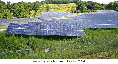 a rural solar farm with a field of yellow flowers in the background