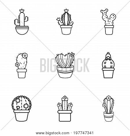 Different cactus icons set. Outline set of 9 different cactus vector icons for web isolated on white background