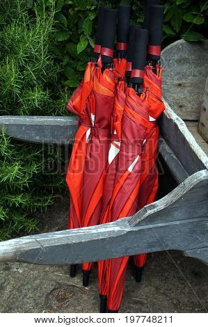 Stack Of Rolled Up Red Umbrellas Leaning On The Handles Of An Old Wooden Wheelbarrow
