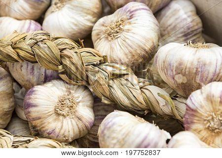 Strings of Garlic at the market FRance
