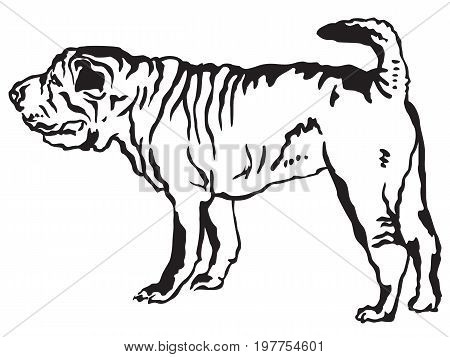 Decorative portrait of standing in profile Shar Pei vector isolated illustration in black color on white background