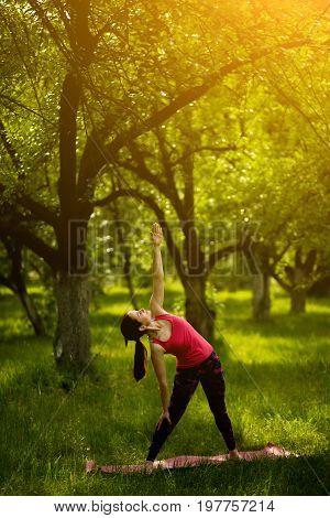 Yoga pose extended triangle. Morning garden, woman practicing yoga doing Utthita Trikonasana. Toned image.