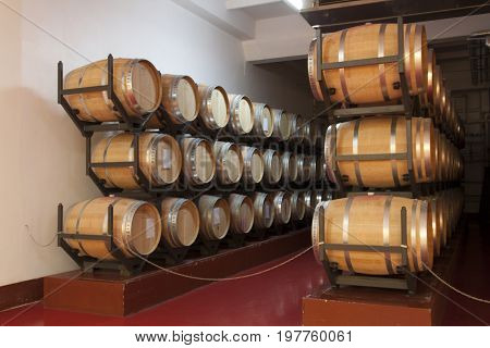 Old wine barrels in a wine cellar photo Shabo Odessa region Ukraine June 20 2017