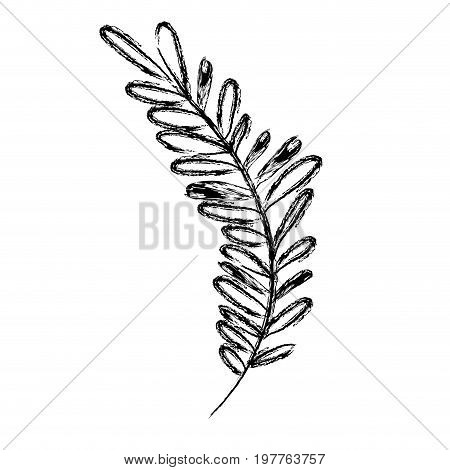 monochrome blurred silhouette of long branch with leaves oval vector illustration