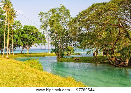 Fresh water flows from the blue hole into the Velit Bay - Espiritu Santo, Vanuatu