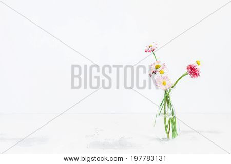 Flowers composition. Daisy flowers in vase on white table. Front view copy space