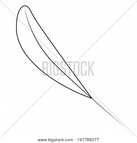 white background with monochrome silhouette of leaf lanceolate vector illustration