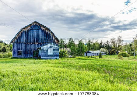 Blue Painted Old Vintage Barn Shed House In Summer Landscape Green Grass Field In Countryside