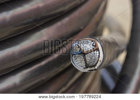 Cross Section Of Electric Black Industrial Underground Cable 2