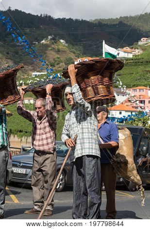 ESTREITO DE CAMARA DE LOBOS PORTUGAL - SEPTEMBER 10 2016: Men carrying baskets of grapes wearing in traditional costumes at Madeira Wine Festival in Estreito de Camara de Lobos Madeira Portugal. The Madeira Wine Festival honors the grape harvest with a ce