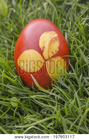 Dyeing Printed Easter Egg
