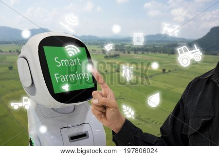 iot internet of things agriculture concept Farmer use smart robot to help to control monitor and management including feed water fertilizer chemical replant etc in the farm for more efficiency