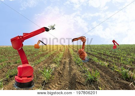 iot internet of things agriculture concepts Farmer use smart farm robot assistant to work in the farm to detect the weed spray the chemical use robot for replace worker and increase efficiency