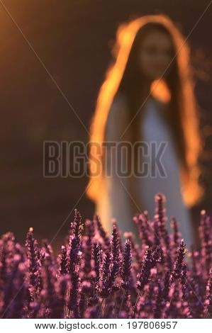 A girl standing in a lavender field out-of-focus scene.