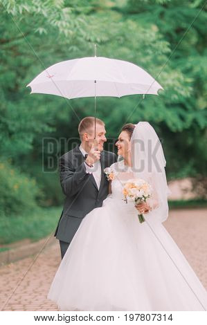 The emotional portrait of the cheerful newlyweds walking under the umbrella in the spring park