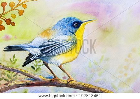 Watercolor landscape original painting on paper colorful of alone bird on a branch amidst beautiful and emotion in sky morning background