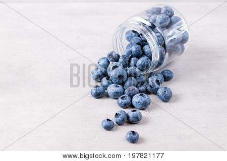 Blueberries on a white background. Close up