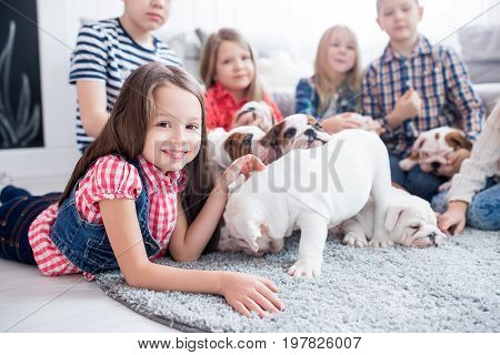 Sweet girl playing with bulldog puppies in the nursery.