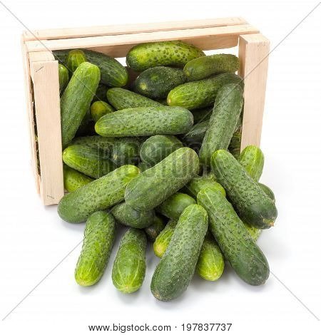 Cucumbers (cucumis Sativus) In Wooden Crate