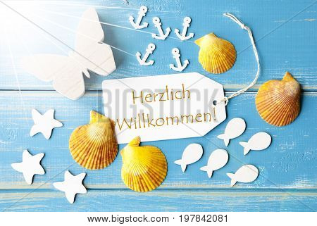 Flat Lay View Of Label With German Text Herzlich Willkommen Means Welcome. Sunny Summer Greeting Card. Butterfly, Shells And Fishes On Blue Wooden Background