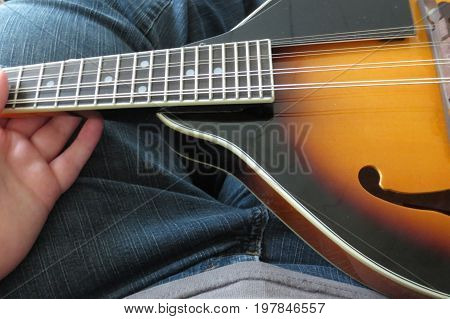 the lap of a woman holding a mandolin