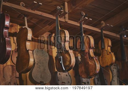 Violins hanging in vintage violin maker's studio