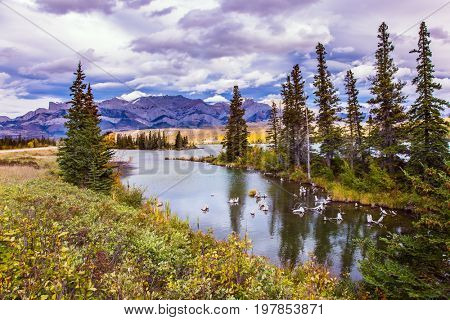 Shallow-water lakes, picturesque firs and distant mountains. The valley along the Pocahontas road. Lush clouds are reflected in the smooth water. Concept of active and ecological tourism