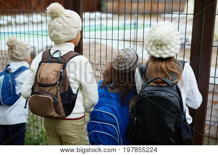 Group of curious schoolchildren looking through fence bars