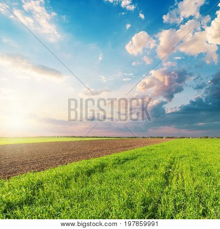 good sunset in clouds over green agriculture field