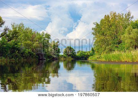 Nice summer landscape on river