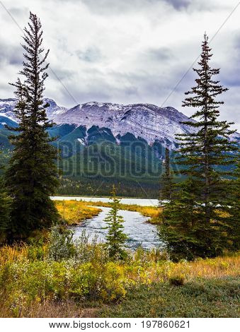 Magnificent journey through the Rocky Mountains of Canada. The valley along the Pocahontas road. Concept of active and ecological tourism. Shallow-water lake, firs and mountain