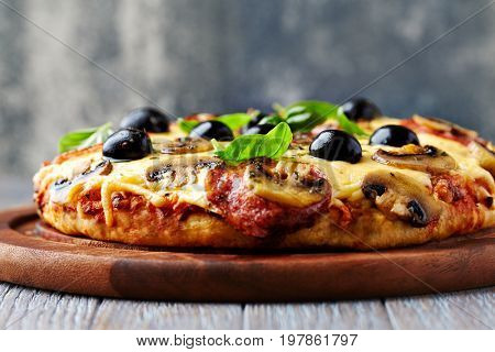 Rustic pizza with salami, black olives and mushrooms