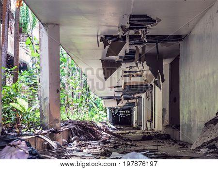 Destroyed Jungle overgrown buildings after 2004 tsunami.  Thailand. Phuket